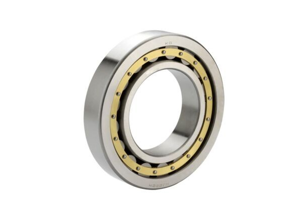 SL045004-PP-2NR INA Cylindrical Roller Bearing